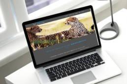 Site internet de CCF Belgium par Actidis